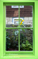 Manatee Lime Window